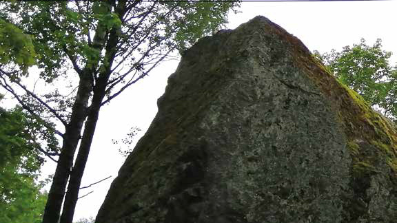 A big rock in a forest.