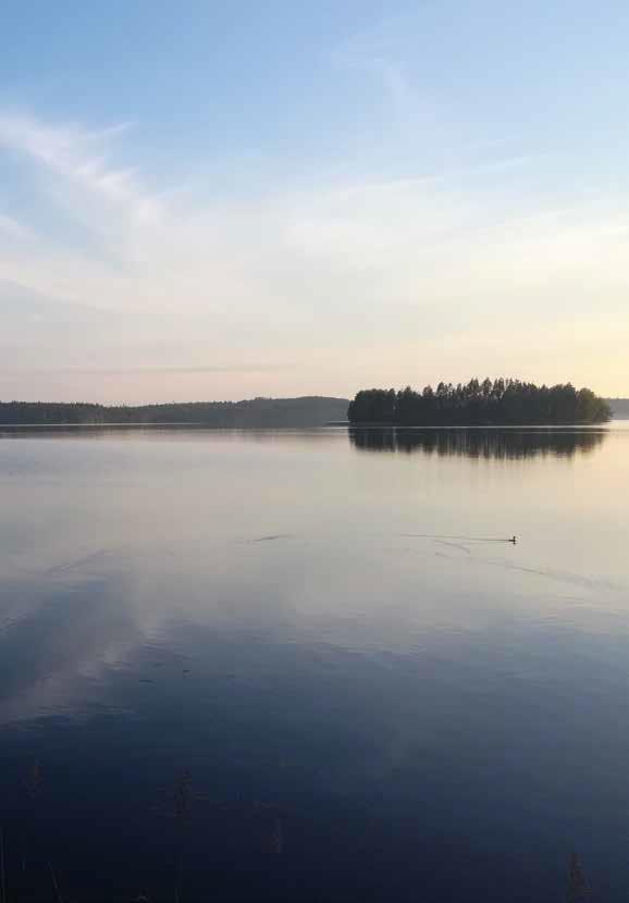 Kaunis järvimaisema. Vesi on peilityyni.