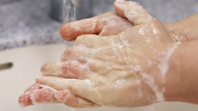 Saippuaiset kädet hanan alla.